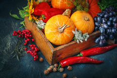 A tabela, decorada com vegetais e frutos Festival da colheita, ação de graças feliz Fotos de Stock