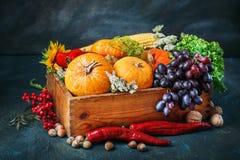 A tabela, decorada com vegetais e frutos Festival da colheita, ação de graças feliz Imagem de Stock Royalty Free