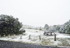 Tabela do banco do piquenique da coberta da tempestade da neve no parque fotos de stock royalty free