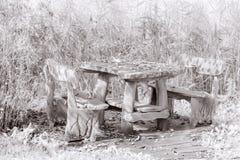 Tabela e banco de madeira de piquenique Fotos de Stock Royalty Free