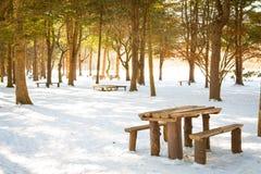 Tabela e cadeiras de madeira na neve Foto de Stock Royalty Free