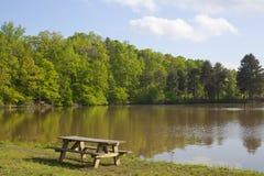 Tabela e lago de Picinic Fotos de Stock