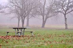 A tabela e os assentos de piquenique contra o outono nevoento estacionam a floresta Imagens de Stock