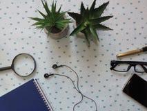 Tabela modelada com fontes, lente de aumento da mesa de escritório, um par de vidros, flores fotos de stock