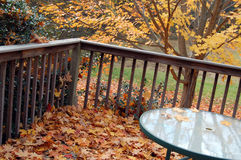 Tabela no outono Fotografia de Stock