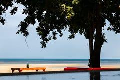 tabela sob a máscara e a árvore na praia com oceano e associação em uma cena na luz solar da noite imagem de stock royalty free