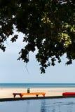 tabela sob a máscara e a árvore na praia com oceano e associação em uma cena na luz solar da noite imagens de stock royalty free