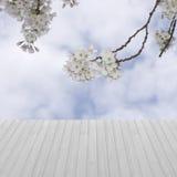 A tabela vazia com árvores de florescência ajardina o fundo, para a pancada Fotos de Stock