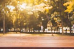 Tabela vazia da placa de madeira na frente do fundo borrado Tabela de madeira marrom da perspectiva sobre árvores do borrão no fu fotos de stock