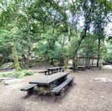 Tabelas de madeira e bancos preparados para comer o assado em uma clareira de Foto de Stock Royalty Free