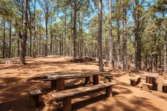 Tabelas de madeira para o piquenique e assado dentro da floresta, Esperanza, foto de stock royalty free