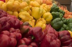 Tabell mycket av färgrika spanska peppar royaltyfri bild