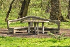 Tabell och bänk i parkera Arkivfoto
