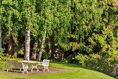 Tabell och stolar på gräsmatta i trädgård Royaltyfri Bild