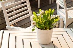 Tabell som är utomhus- med en grupp av blommor Royaltyfri Foto