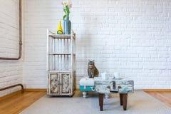 Tabell stolar, hyllor på bakgrunden av en vit tegelstenvägg i tappningvinden som är inre med katten arkivbilder