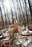 Tabella con alimento in foresta Fotografia Stock Libera da Diritti