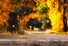 Tabella con le foglie di autunno su sfondo naturale Immagine Stock