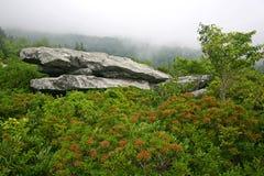 Tabella della roccia fotografia stock
