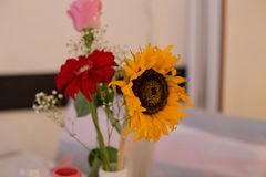 Tabella di affari con i fiori Fotografia Stock Libera da Diritti