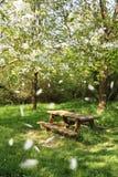 Tabella di picnic della sorgente Fotografia Stock