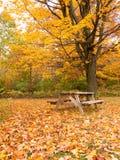 Tabella di picnic di autunno nella sosta Immagine Stock Libera da Diritti