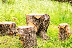 Tabella e sedie di picnic Fotografie Stock Libere da Diritti