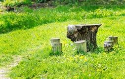 Tabella e sedie di picnic Immagini Stock Libere da Diritti