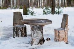 Tabella e sedie fatte dei tronchi di albero Fotografia Stock Libera da Diritti