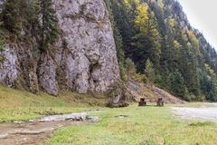 Tabella per un picnic vicino ad una corrente bassa che entra nelle pianure al piede delle montagne carpatiche Immagini Stock