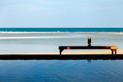 Tabella sotto ombra sulla spiaggia con l'oceano e stagno in una scena su luce solare di sera Immagine Stock Libera da Diritti