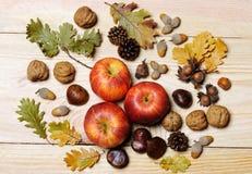 tabella variopinta della zucca dell'accumulazione di autunno Immagini Stock