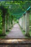 Tabelle des hölzernen Brettes der Weinlese vor träumerischer und abstrakter Parklandschaft Lizenzfreie Stockfotos