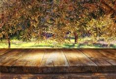 Tabelle des hölzernen Brettes der Weinlese vor träumerischer und abstrakter Waldlandschaft mit Blendenfleck Lizenzfreie Stockfotografie