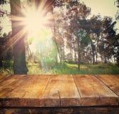 Tabelle des hölzernen Brettes der Weinlese vor träumerischer Waldlandschaft mit Blendenfleck Lizenzfreies Stockbild