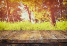 Tabelle des hölzernen Brettes der Weinlese vor träumerischer Waldlandschaft mit Blendenfleck Stockbilder