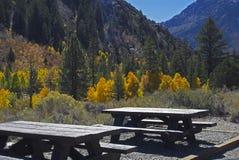 Tabelle di picnic Immagine Stock