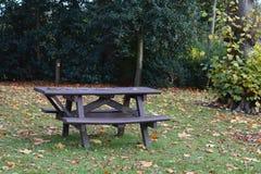 Tabelle im Park lizenzfreie stockfotos