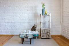 Tabelle, St?hle, Regale auf dem Hintergrund einer wei?en Backsteinmauer im Weinlesedachboden Innen mit Katze stockfotografie
