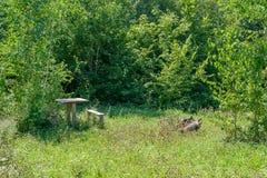 Tabelle und Stühle im Wald Stockfotos