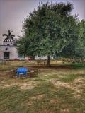 Tabelle unter einem Baum Lizenzfreies Stockfoto