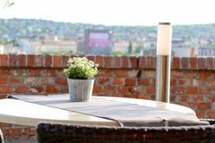 Tabeller med stolar på terrass av den kust- restaurangen Fotografering för Bildbyråer