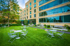 Tabeller och stolar och Tata Hall, på den Harvard Business skolan, in Royaltyfria Foton