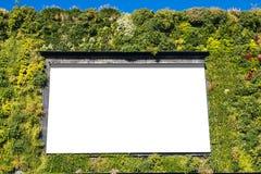 Tabellone per le affissioni in bianco in una parete verde fotografia stock libera da diritti