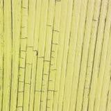 Tablón de madera agrietado, color amarillo Imagen de archivo libre de regalías