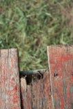 Tablón de madera viejo con el fondo de la hierba verde de la falta de definición Imagen de archivo