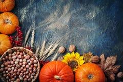 Tabla adornada con las calabazas y Festival de la cosecha, acción de gracias feliz Foto de archivo libre de regalías