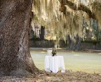 Tabla al aire libre con el vino debajo del árbol Fotografía de archivo libre de regalías