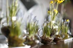 Tabla con las flores de la primavera Imágenes de archivo libres de regalías