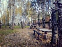 Tabla con un banco en un bosque del abedul del otoño, en las casas de madera viejas del fondo Imagen de archivo libre de regalías